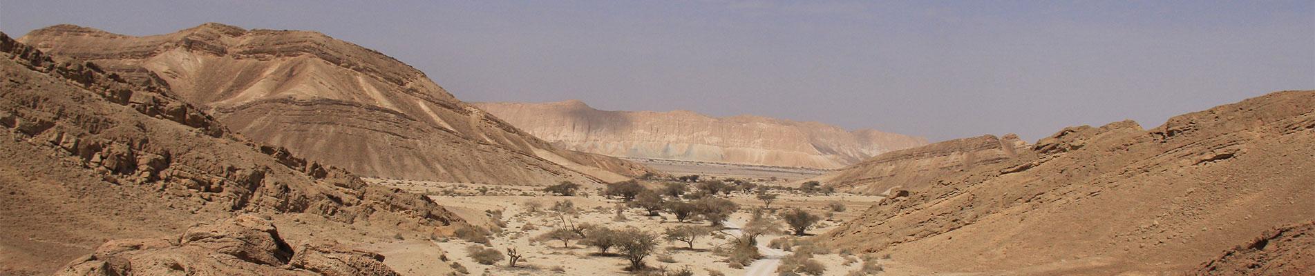 המרחבים של המדבר