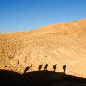 טיולים במדבר
